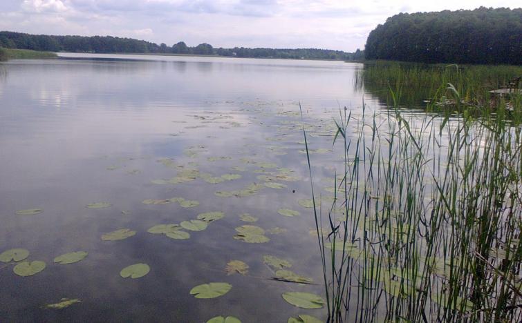 5 Tage Polen entdecken und genießen inklusive 3-Gang Menü Willkommen im Ferienort Bronkow!